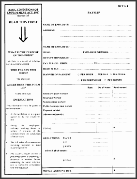 sample of a payslip for south africa