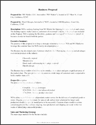new business proposal template business proposal template example