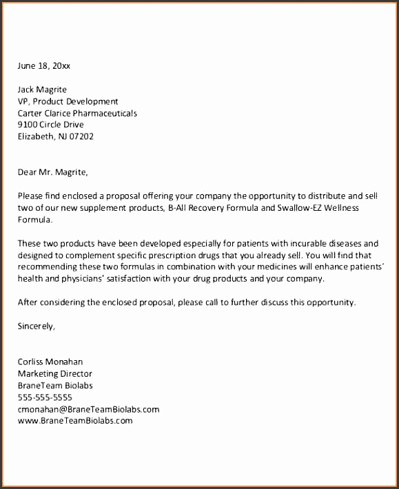 9 business proposal letter example bud proposal business proposal letter example business proposal letter templates