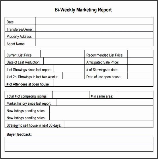 printable word bi weekly marketing report