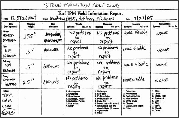 daily activity log sheet