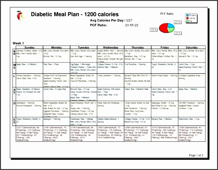 5  daily meal planner template