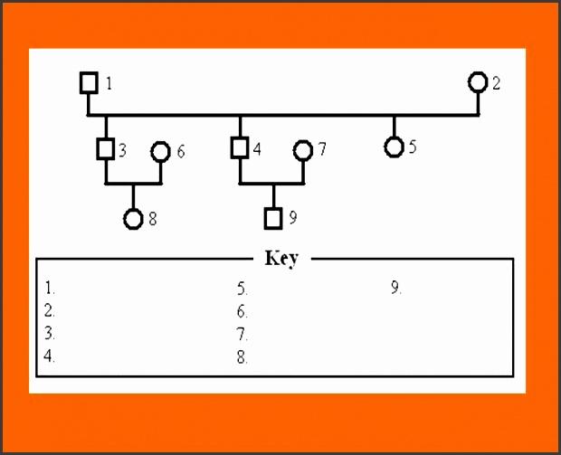 genogram template 26 genogram template 26