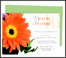 use with word openoffice publisher apple iwork pages easy to edit and print design find this pin and more on birthday invitation templates