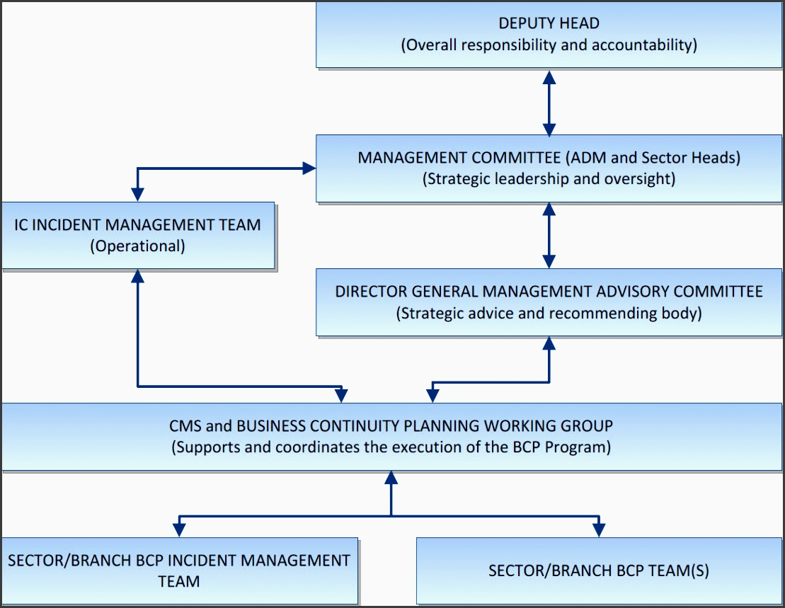 figure 1 ic bcp program governance structure