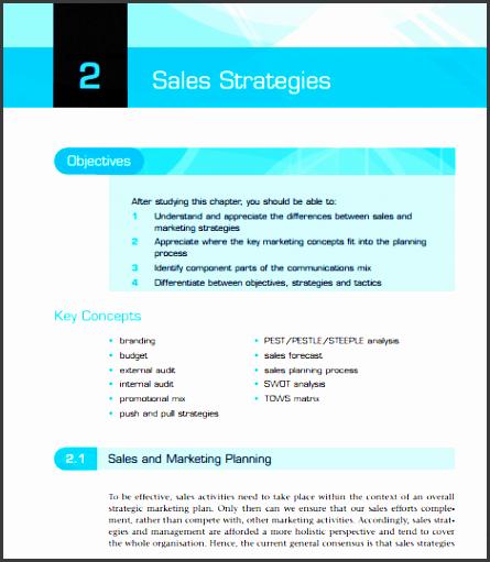 sales plan example 25 46
