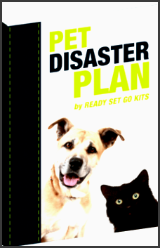 pet disaster plan template