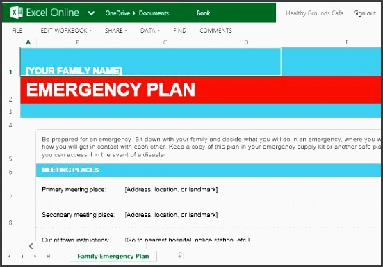 family emergency plan template for excel online