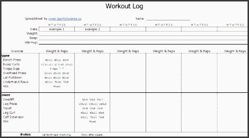 excel workout log