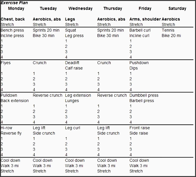 meal schedule template awesome fitness plan template