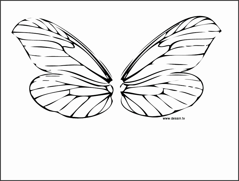 butterfly wings template free kite patterns printable making printables large size
