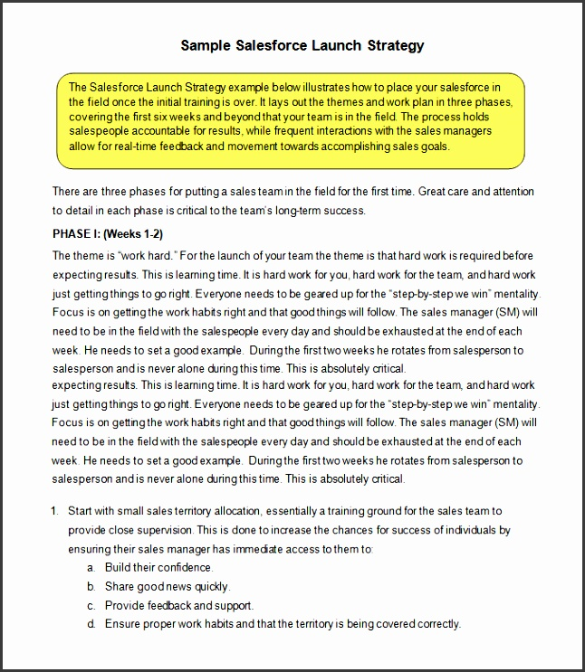 free sales strategy template pdf