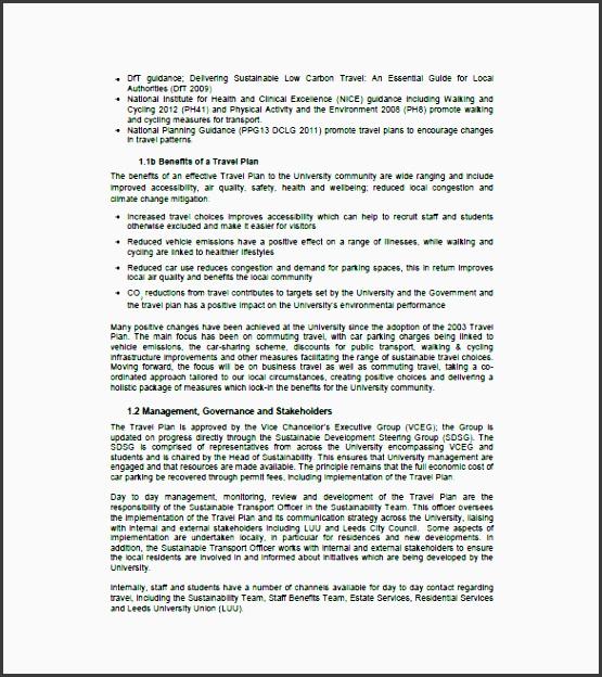 sample travel business plan template