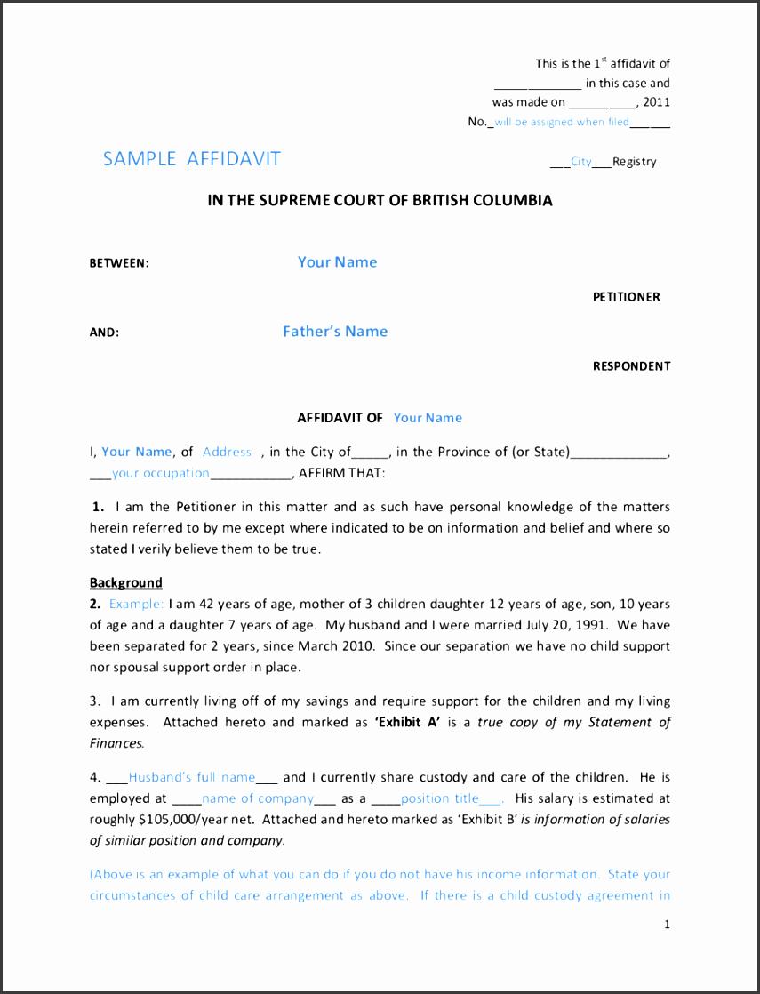 affidavit in the supreme court of british columbia