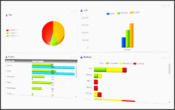 rather than have dave the excel whiz spend hours creating pivot tables to make sense of the project data a project dashboard shows you instantly a