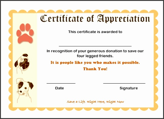 certificate of appreciation for donation to save pets certificate of appreciation donation 9