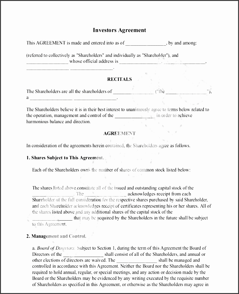 investors agreement sample