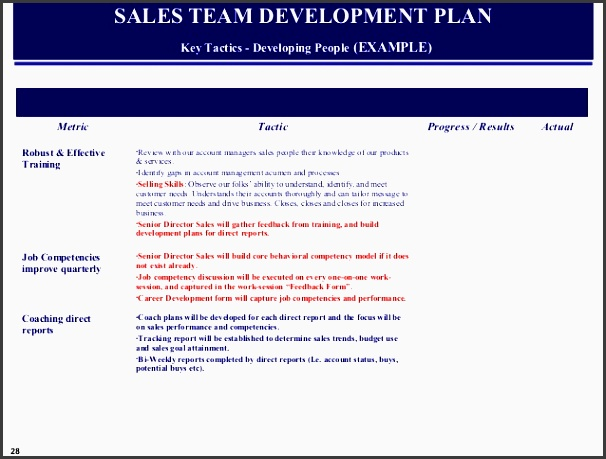 sales team development plan