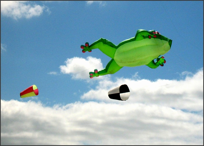 different kinds of kites seen at festivals a giant pink and purple sea horse inflatable