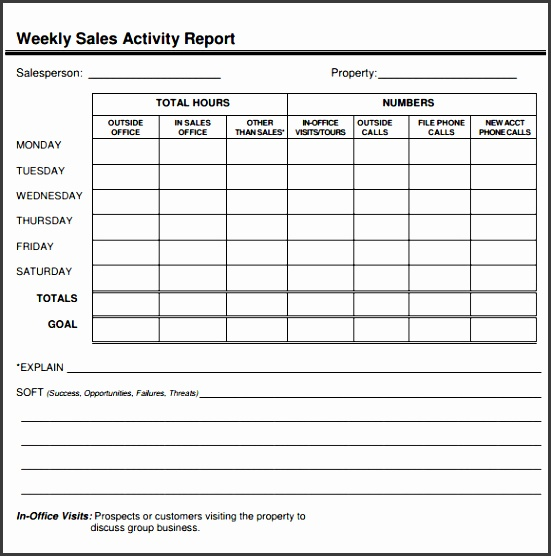 weekly sales report template1