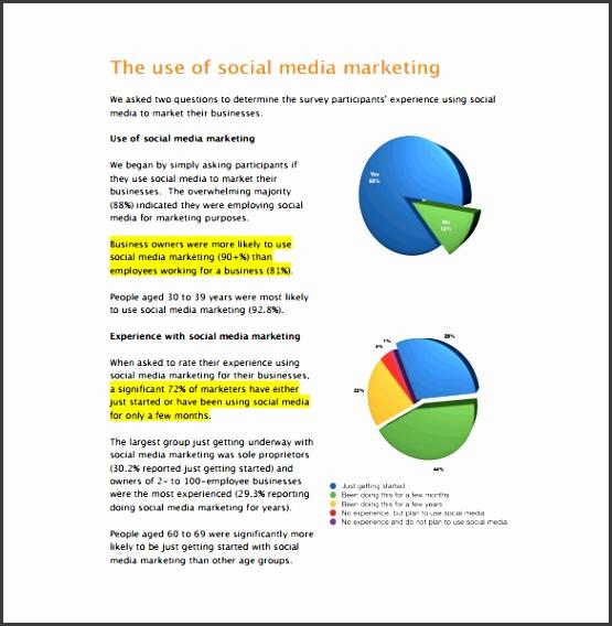 social media marketing industry report pdf free