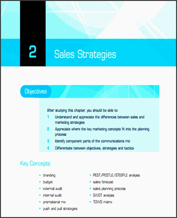 business plan for it sales manager