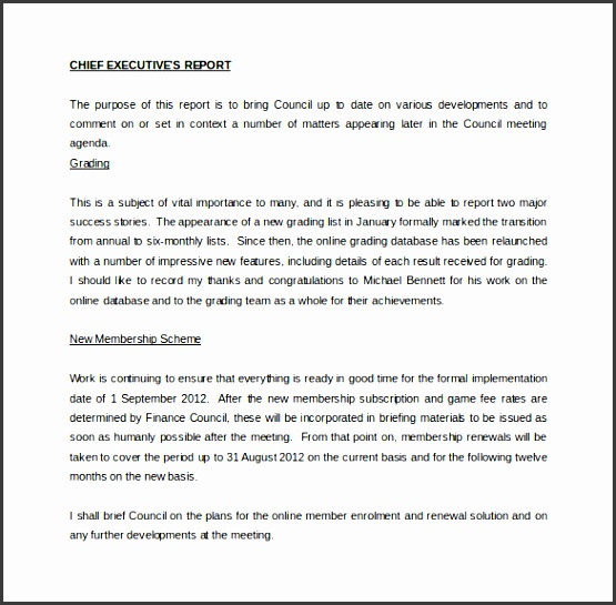 chief executive officer report word template free