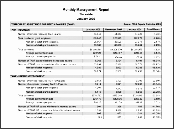 pdf format monthly management report template
