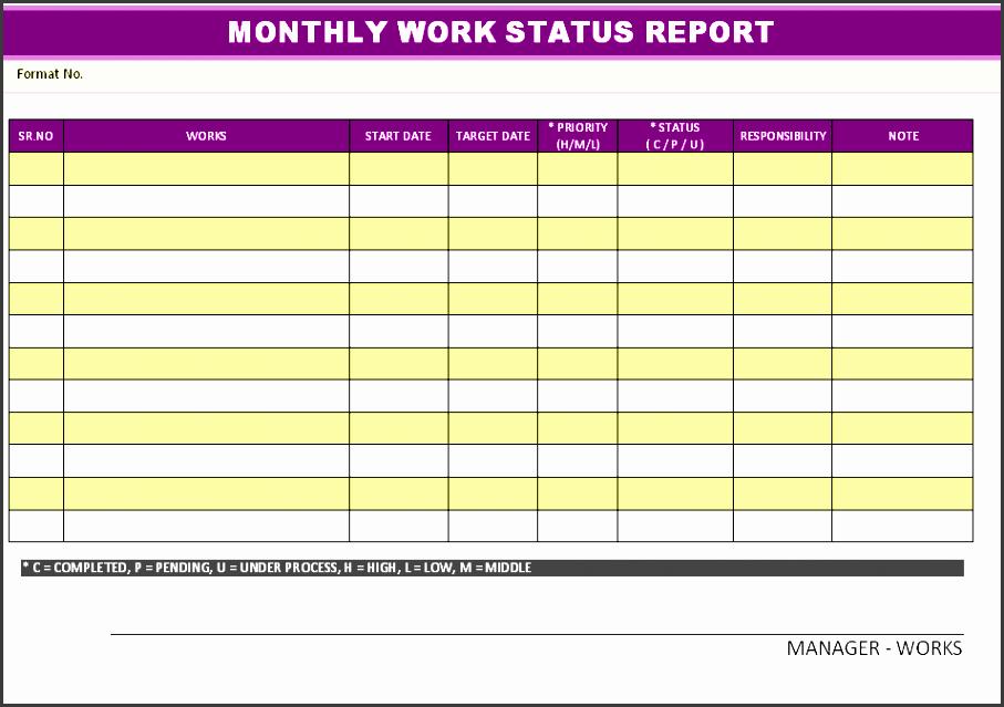 monthly workstatus report