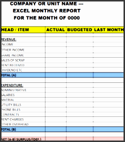 it has all the necessary entities that usually a excel monthly report template or