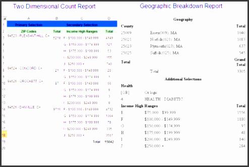 count report sample