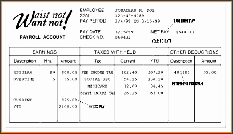 free fake pay stub template c pay stub format a free pay stub template for fake pay stub template