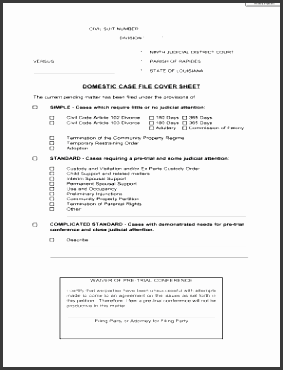 domestic case file cover sheet 9th judicial district court 9thjdc
