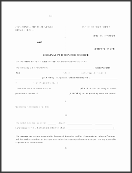 petition of divorce legal pleading template