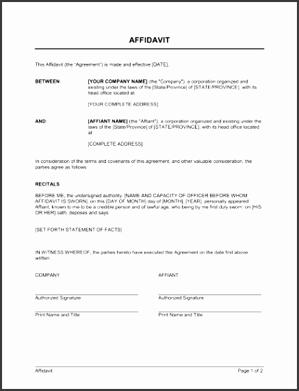 affidavit 1 fill in the blanks 2 customize template 3 save as print share sign done
