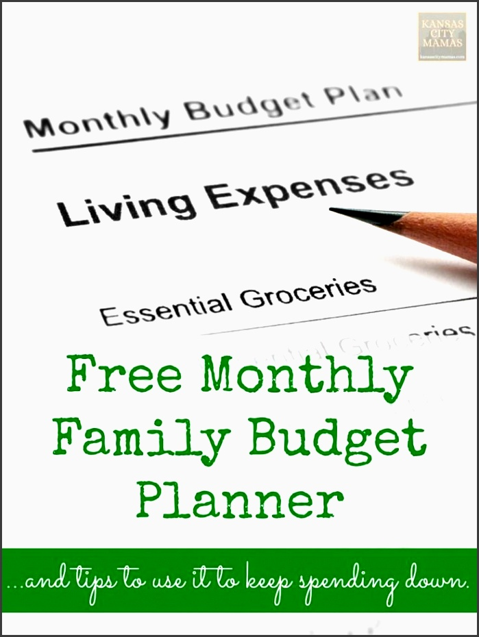 6 Printable Family Monthly Budget Planner For Free