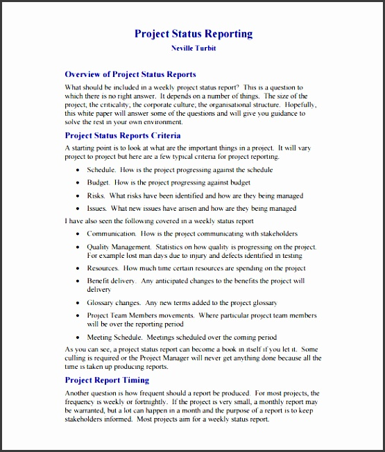 software project weekly status report template pdf printable