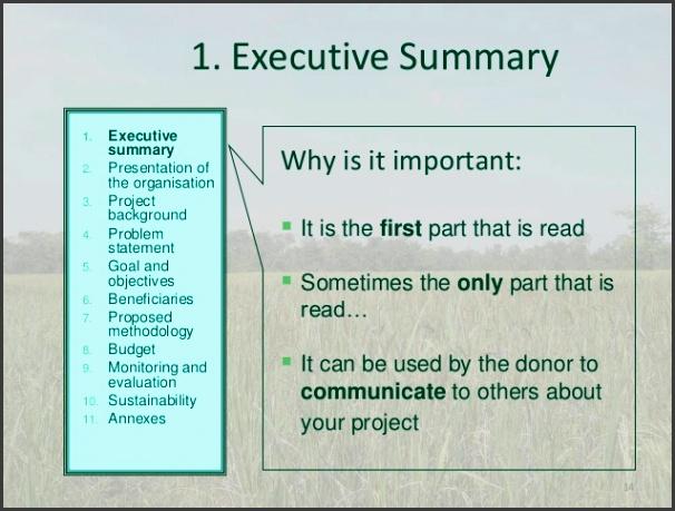 evaluation sustainability annexes 14 1 executive summary