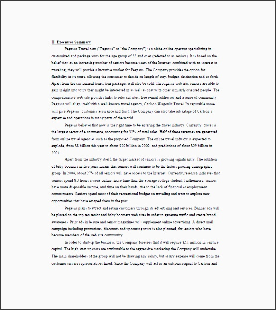 business plan template for travel agency travel business plan template 8 free word excel pdf format