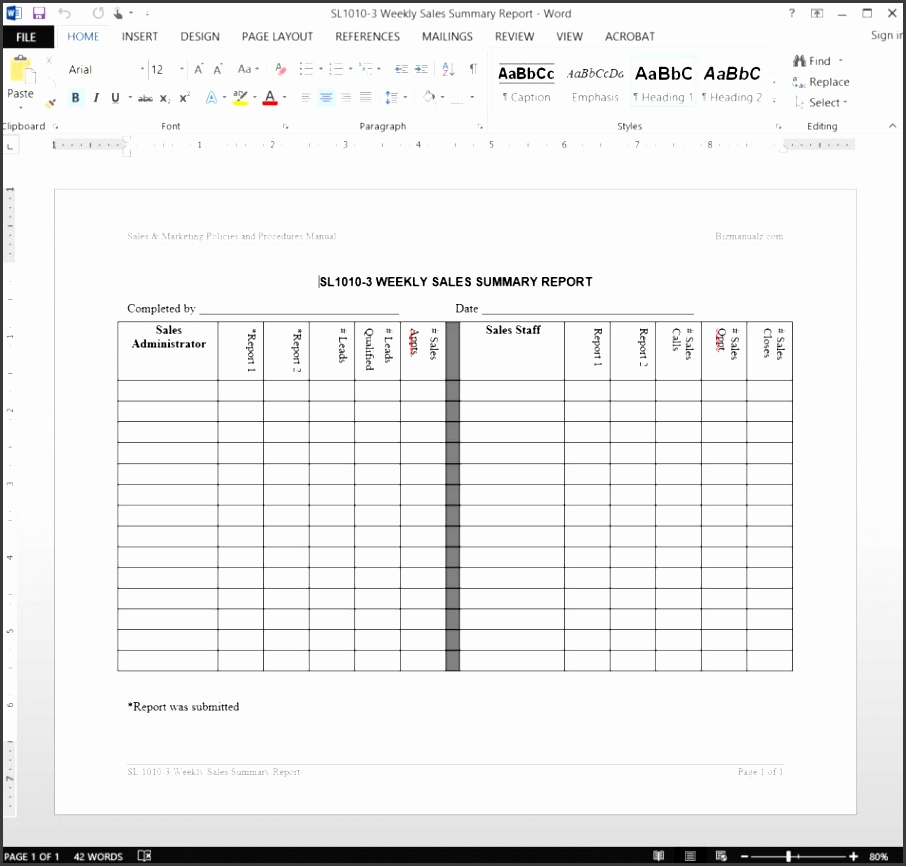 sales marketing forms weekly sales summary report template sl1010