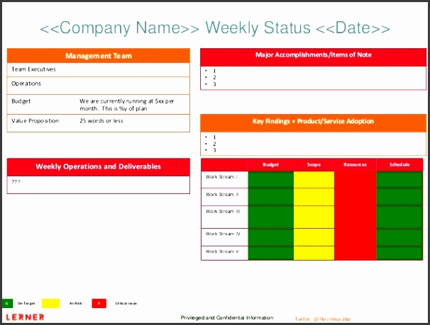 executive status report template privileged and confidential information pany name weekly status date