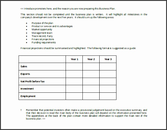 Business Strategy Plan Example Doc Format Free Template