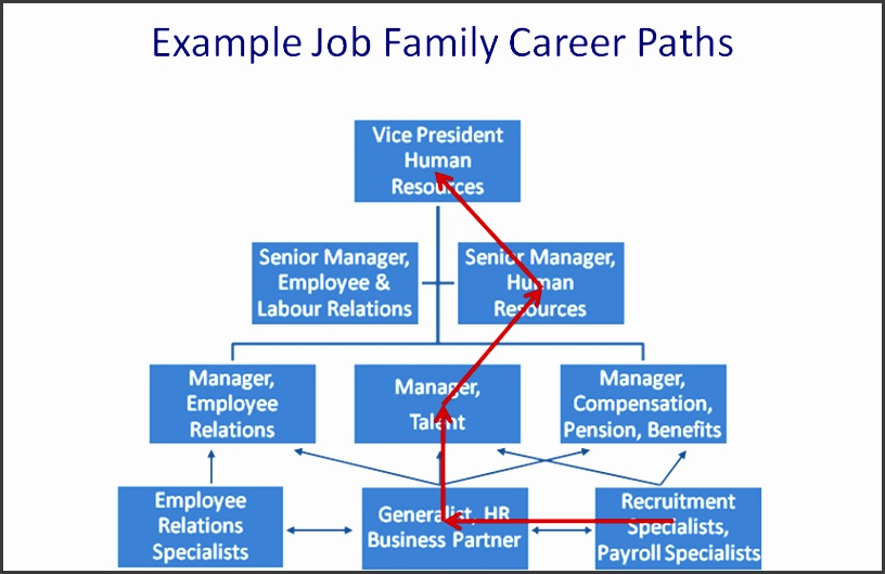 petency based career planning and development