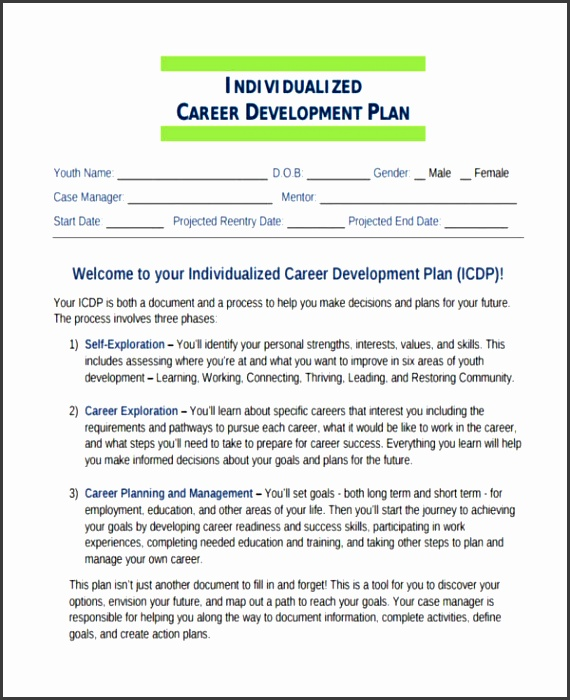 career plan template