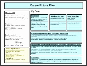 9 career plan example template sampletemplatess for Five year career development plan template