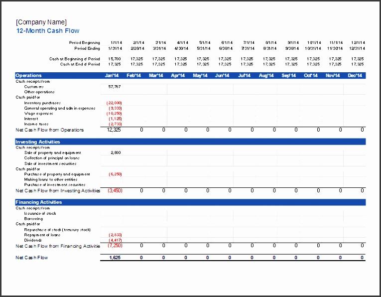 12 month cash flow projection