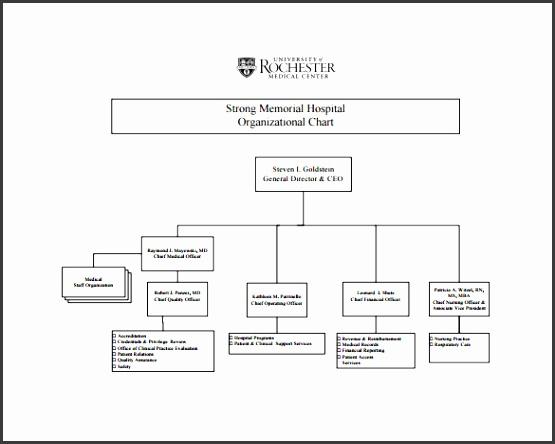 Free Hospital Organizational Chart PDF Download