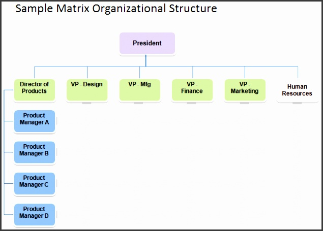 Matrix Organizational Structure Sample Matrix Organizational Structure