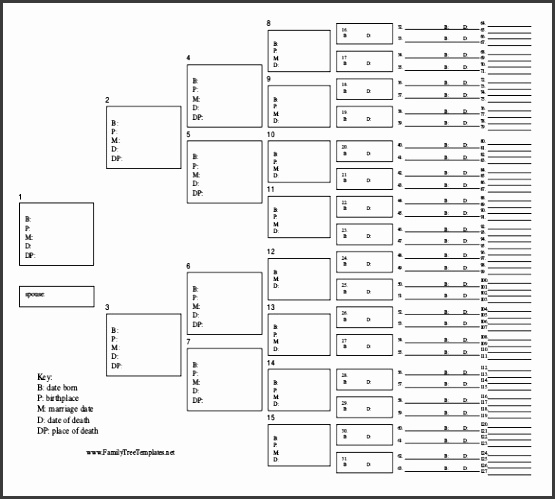 Free Download PDF Format Family Tree Template