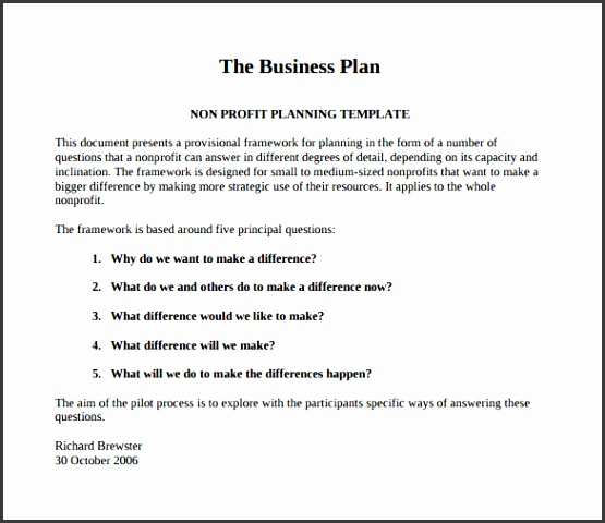 The Business Plan Nonprofit Pilot Template PDF Free Download